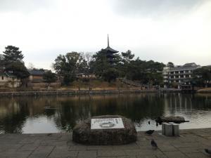 sarusawa0215_convert_20150215112219.jpg