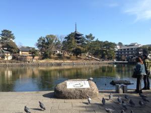 sarusawa0216_convert_20150216122550.jpg