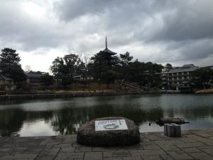 sarusawa0218_convert_20150218124341.jpg
