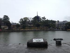sarusawa0301_convert_20150301110822.jpg