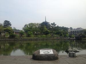 sarusawa0428_convert_20150428112901.jpg