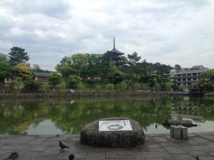 sarusawa0509_convert_20150509111630.jpg