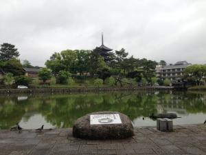 sarusawa0519_convert_20150519111641.jpg