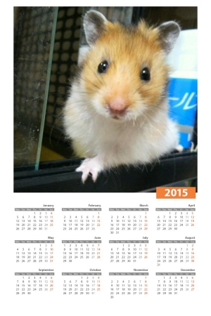あん虎カレンダー