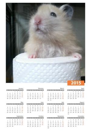 絵日記12・31きな虎