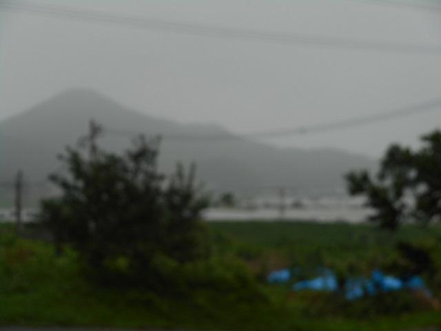 taifuu (2)