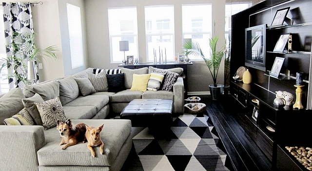 Small-black-and-white-living-room-with-a-plush-couch-at-its-heart.jpg