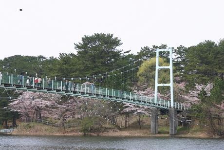 ashinokoen16.jpg