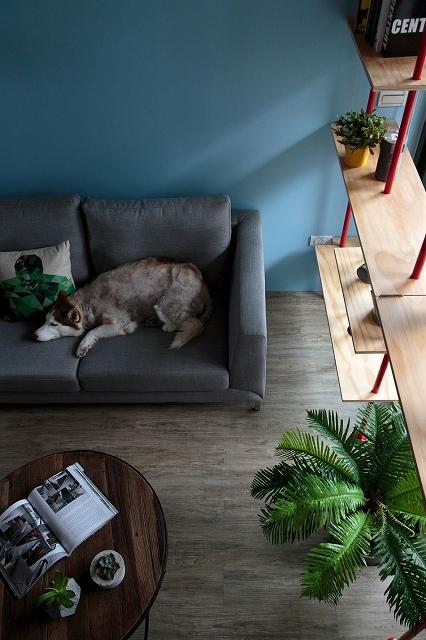 modern-home-design-55.jpg