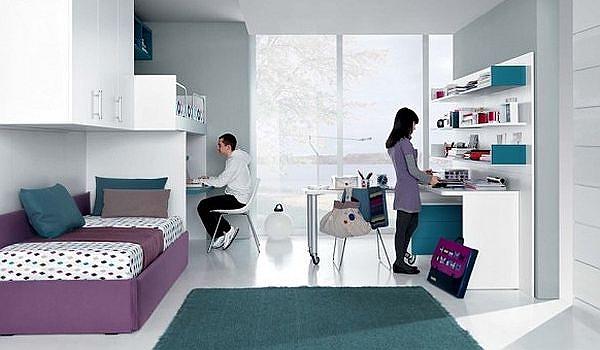 sleek-teenagers-room-jade-mauve-and-white-furniture-and-decor.jpg