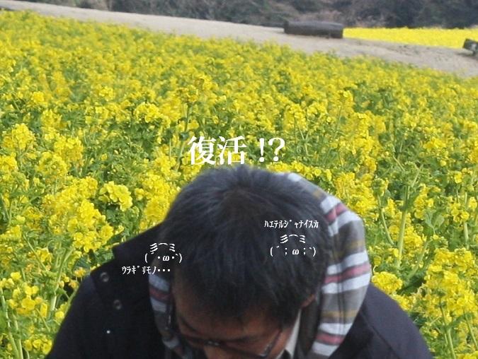 0314hukkatsu.jpg