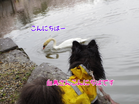 2015,04,19-07