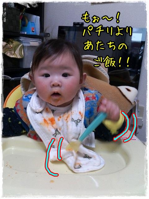 もっとご飯およこし!!