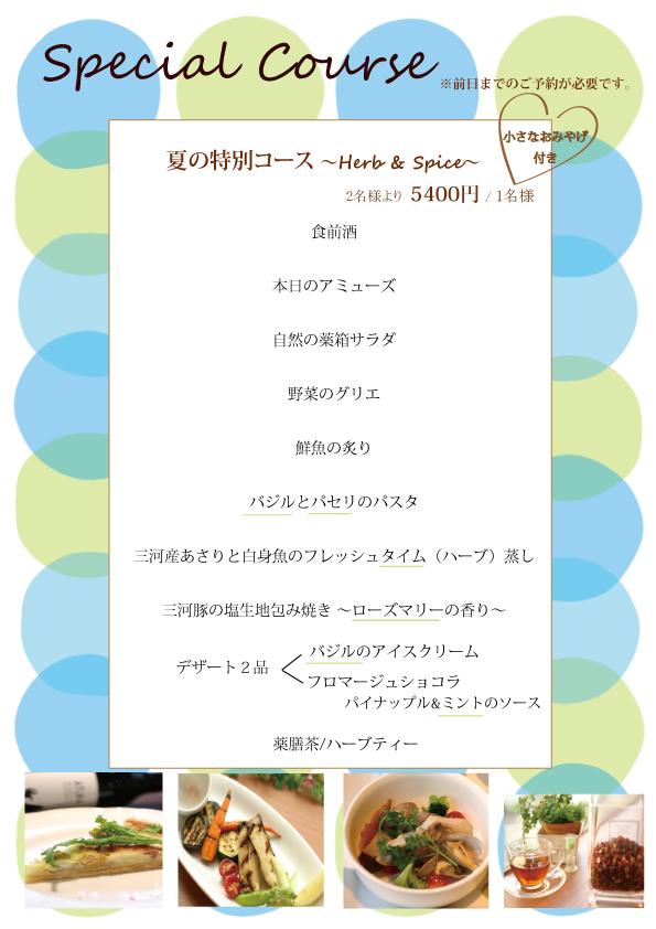 2015 夏 特別コース WEB用