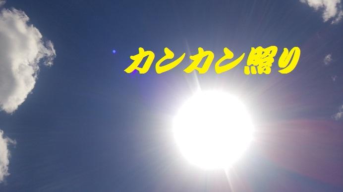 sunsun.jpg