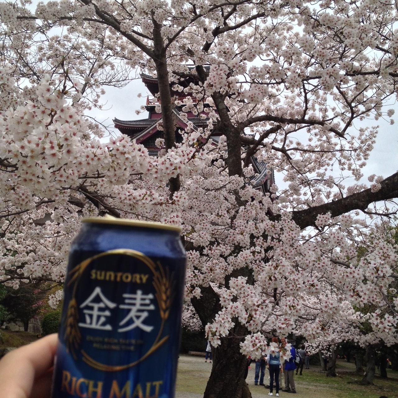 桃山城で乾杯