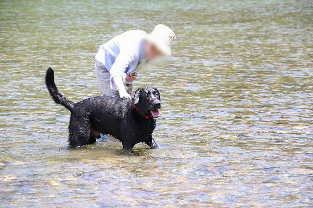 お母さんと川へ