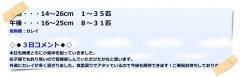 150503027(午後シロギス)