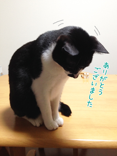 150401_6.jpg