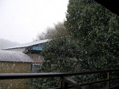 201502131527雪②