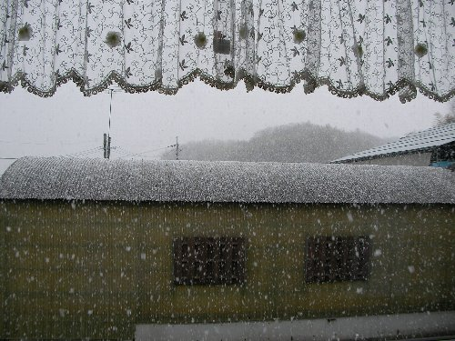 201502131527雪①