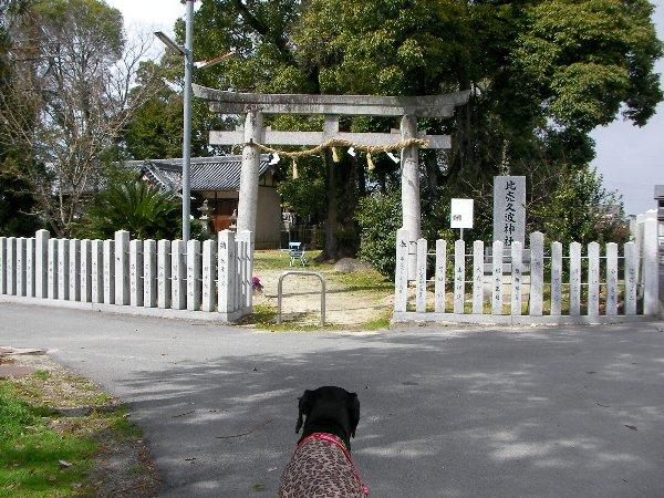201503101338ひめくわ神社