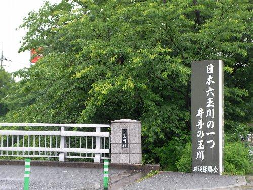 201505160944京都へ①