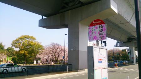 桧原桜バス停