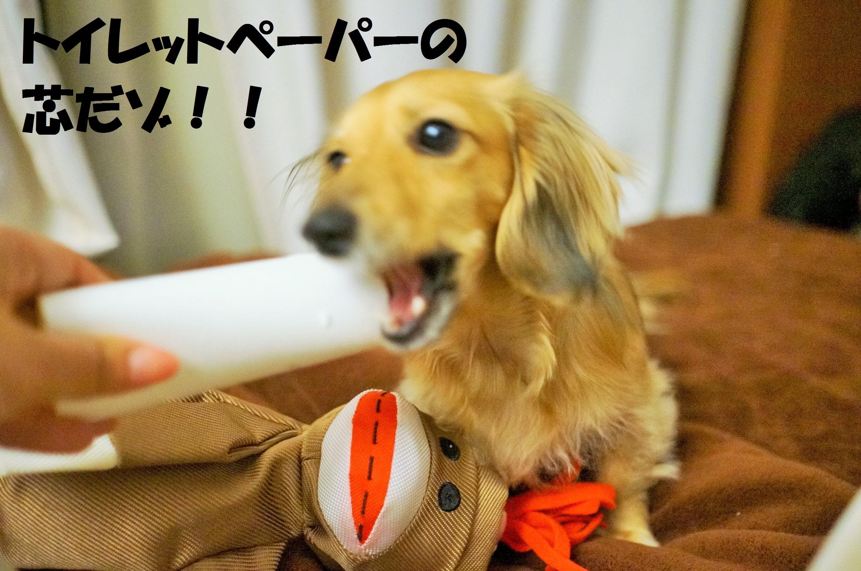 ShinDaisuki3.jpg