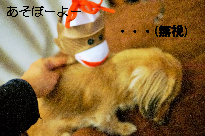 ShinDaisuki6.jpg