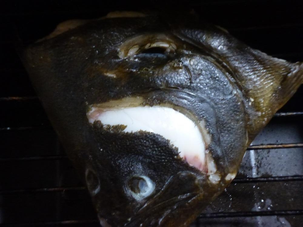 ヒラメの頭 焼く 鍋
