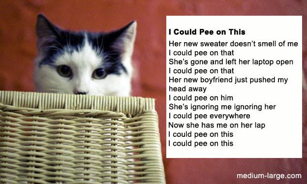 cat-pee-poem-2.jpg