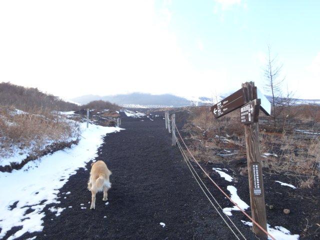 富士山2014.12.9 253