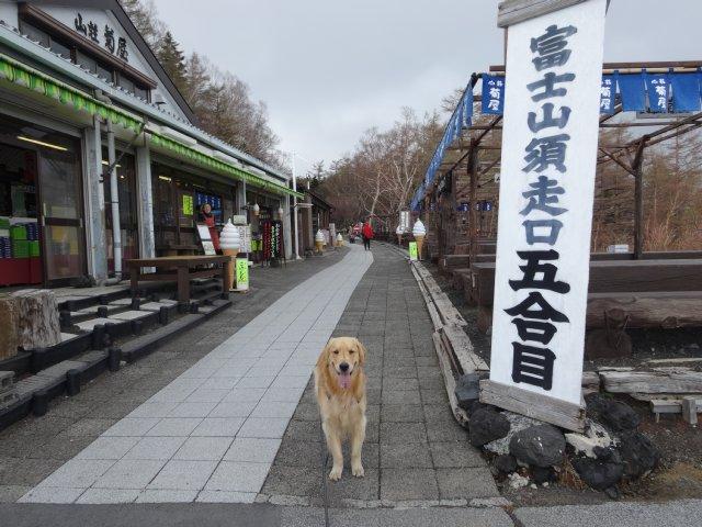 富士山2015.5.4 006