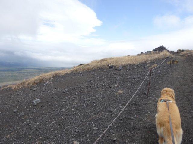 富士山2015.5.4 089