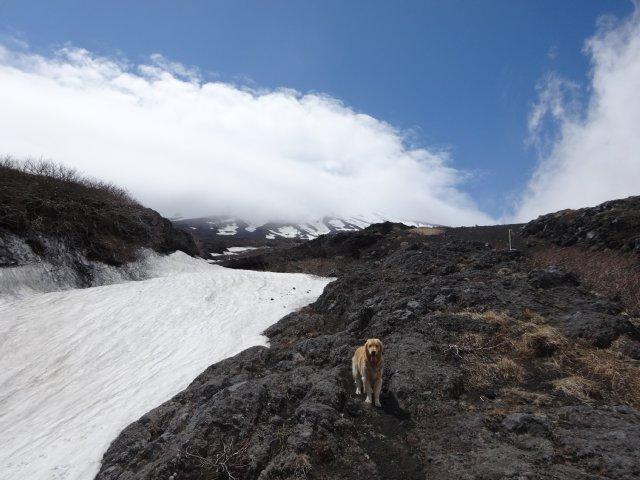 富士山2015.5.4 111