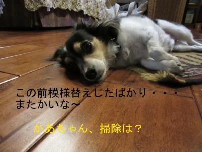 IMG_1364a.jpg