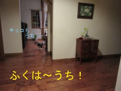 IMG_2537a.jpg
