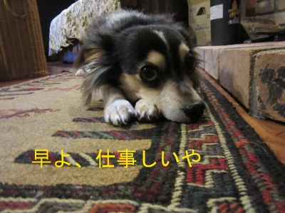 IMG_3280a.jpg
