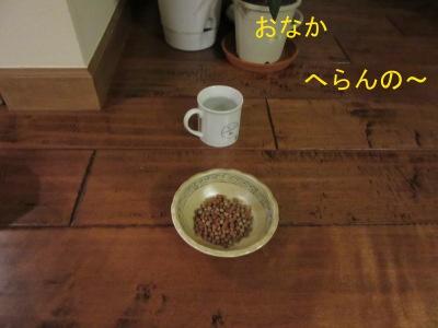 IMG_3765a.jpg