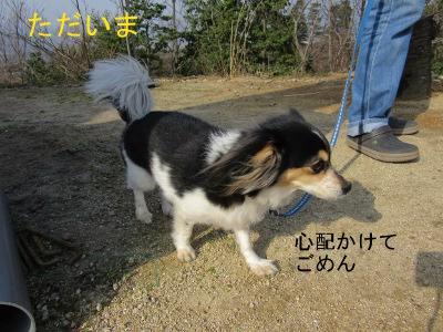IMG_3921a.jpg