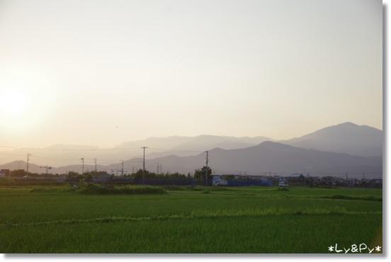 IMGP7956[1]