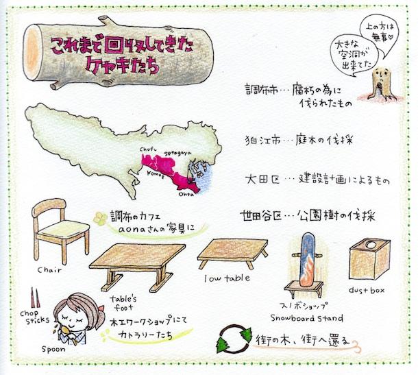 keyaki_cut2 1m
