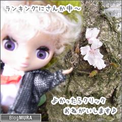 20150328_blogmura_ranking.png