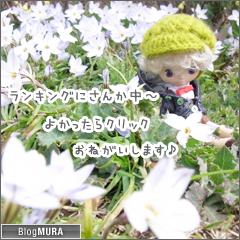 20150329_blogmura_ranking.png