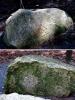 伏見城の石②1503