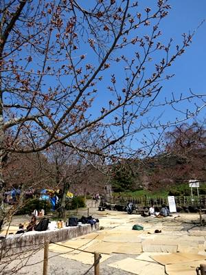 円山公園1503
