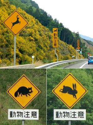 高速道路動物注意1505