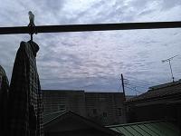 fuji429d.jpg