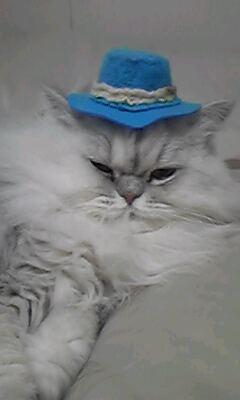 ゆぼぼさん帽子